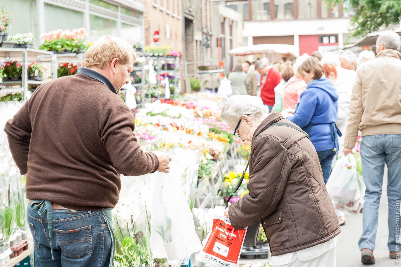 Marché de Bruges: Fleurs