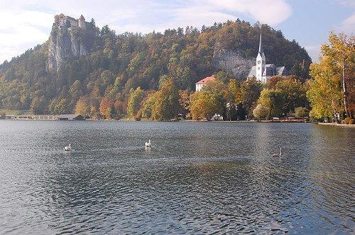 Bled Castle & Church