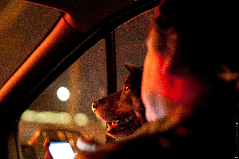 Akira en voiture