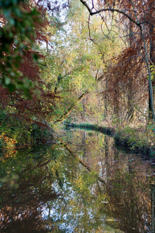Bois de Vincennes en automne