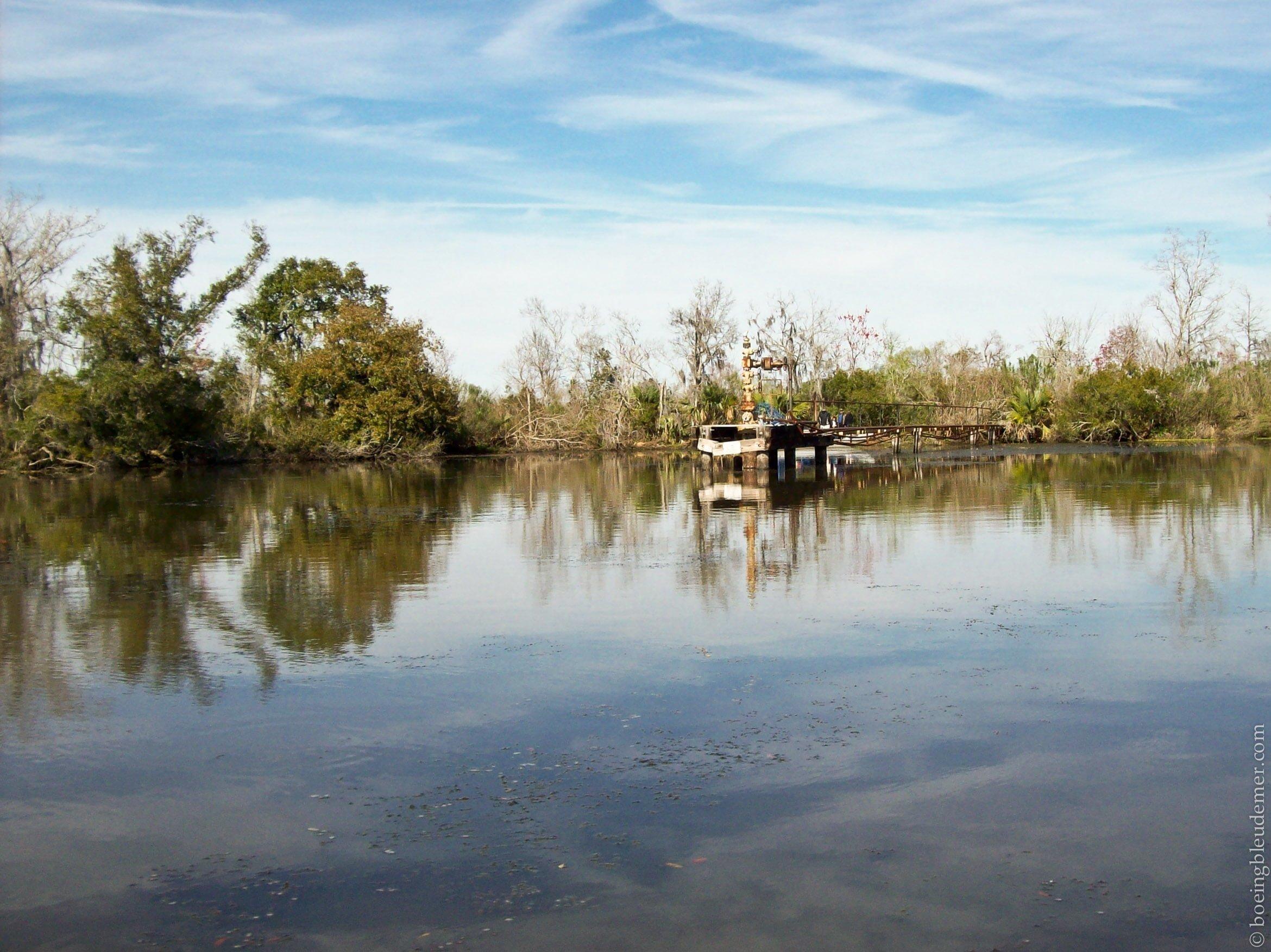 Louisiana-Bayou-294