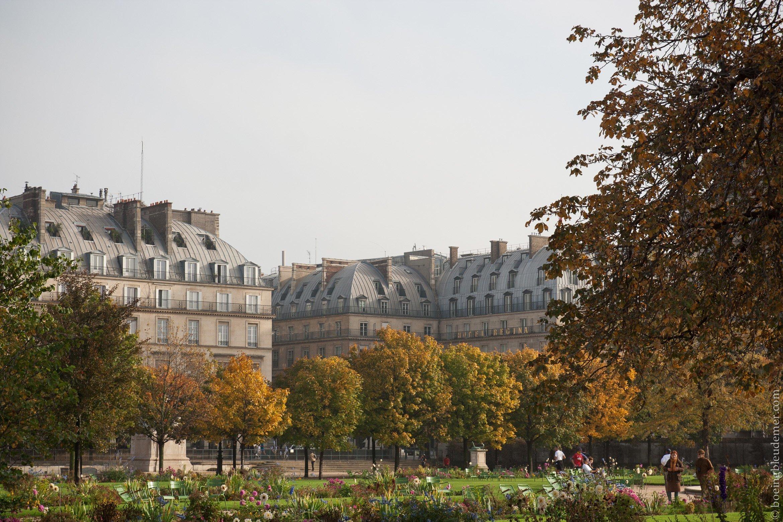 Paris-6536