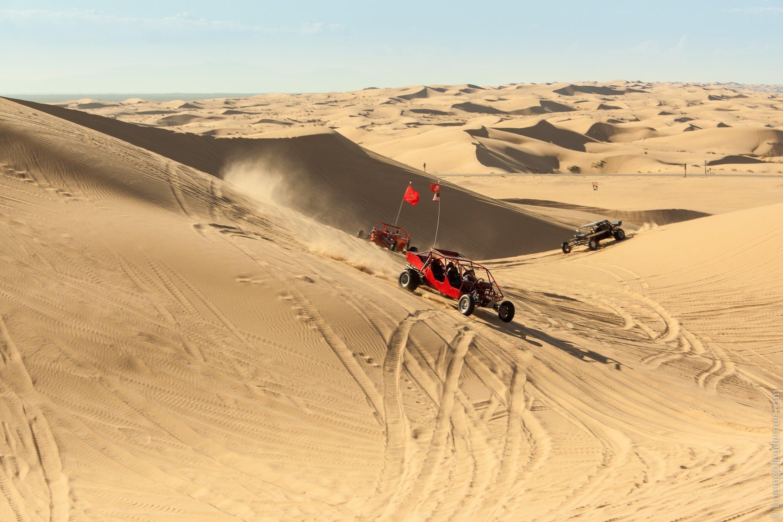 Les dune Algodones, CA dans le désert du Colorado