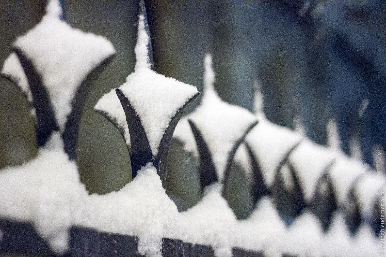 Snow-7859