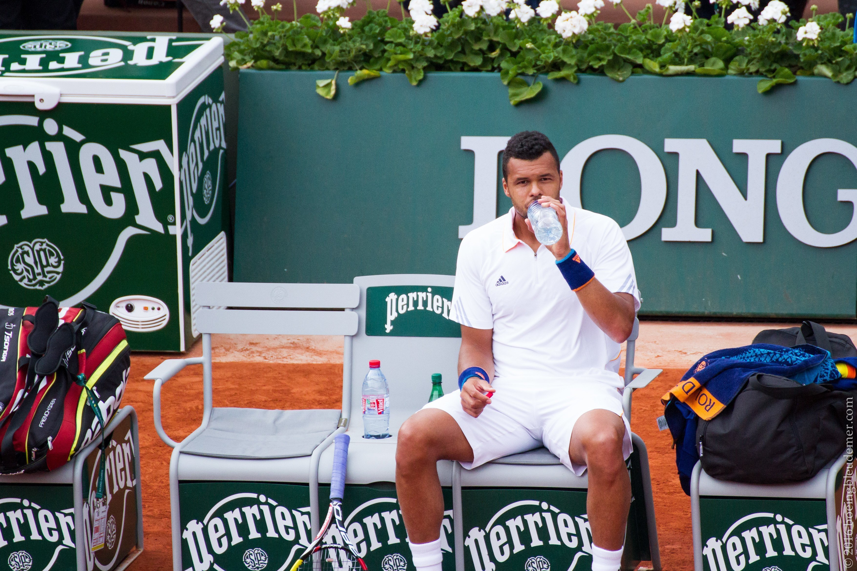 Roland Garros: Jo-Wilfried Tsonga sur le banc