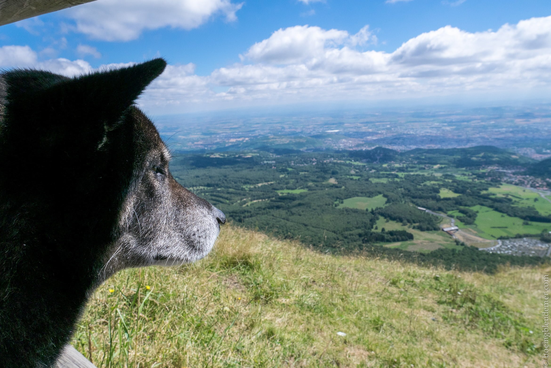 Akira en vacances en Auvergne