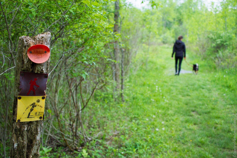 Sentier au Lac Champlain