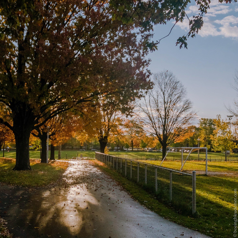 Parc Saint-Donat en automne