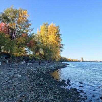 Le Parc Bellerive en automne